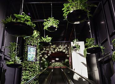 Ontdek het nieuwe Floriworld in Aalsmeer