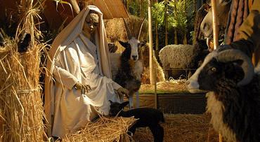 Kerststal Sint Jan en Bossche Bollen