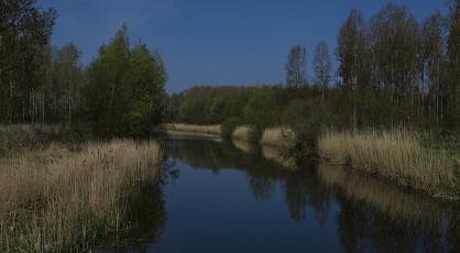 Ontdekkingstocht Biesbosch