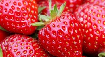 Heerlijke aardbeien en 't Veluwemeer