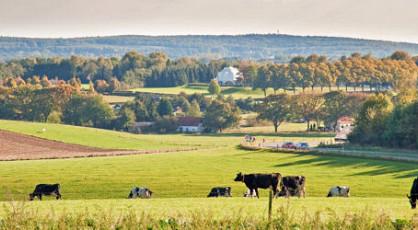 Gouden herfst in het rijk van Nijmegen