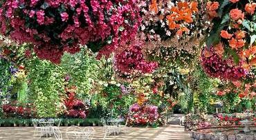 Zwevende bloementuin